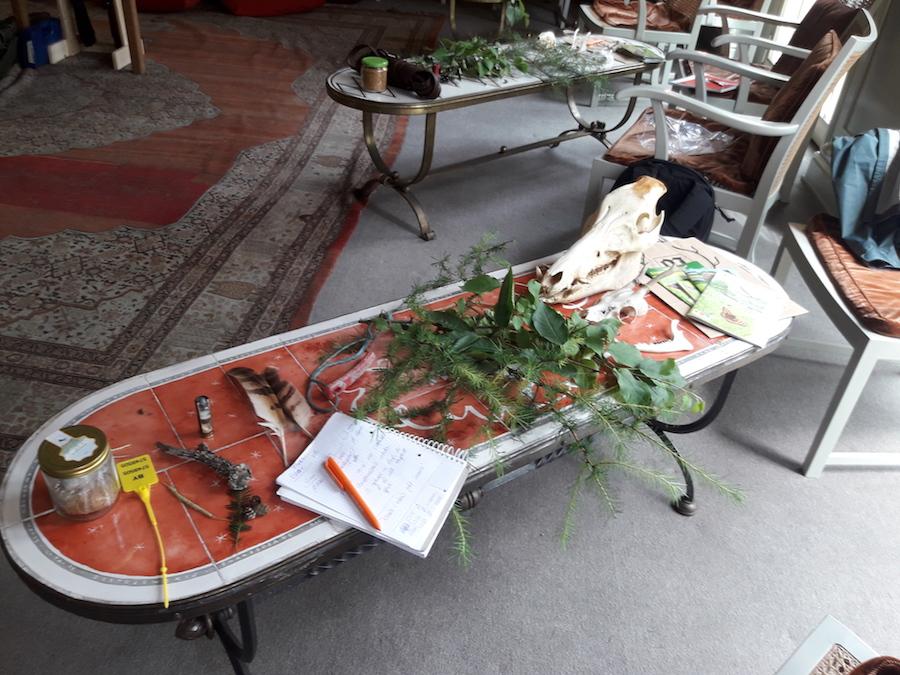 Präsenz-Unterricht Jagdschule Grünthal